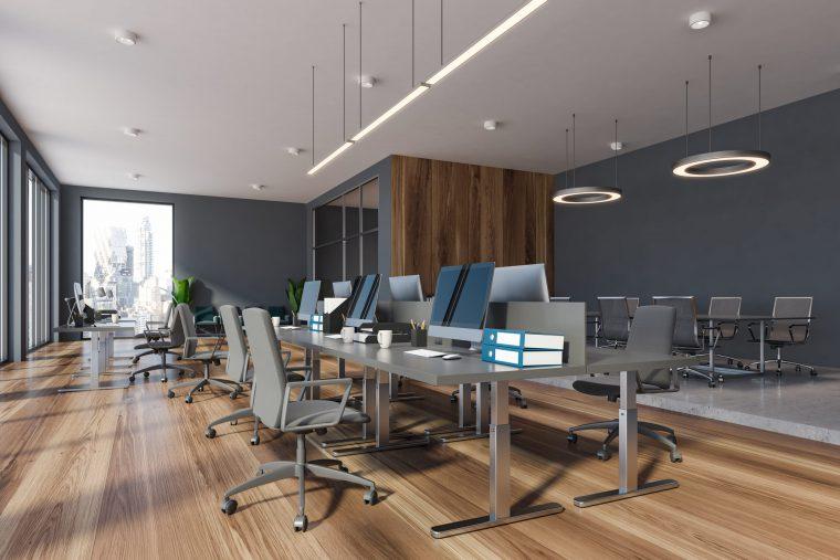 Modern office open concept with grey walls hardwood floors